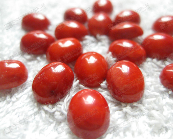 Wholesale loose natural semi precious gemstone red coral oval cabochon