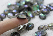 12x16mm stone doublet,abalone shell doublet stone